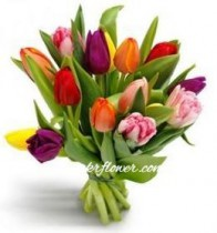 11 mixed coloured tulips