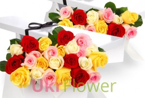 25 colored roses in gift box ― Ukrflower - flower delivery