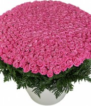 "Bouquet of Roses ""Pink Panther """