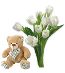 Bouquet of tulips and Bear