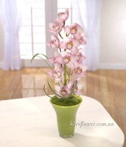 """Wild Orchid"" arrangement"