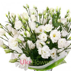 "Bouquet ""Serenade "" ― Ukrflower - flower delivery"