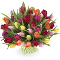 "Bouquet of Tulips ""Rainbow ""- 51 pcs."