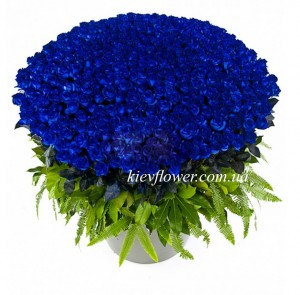 "Basket of 101 blue roses ""Ocean "" ― Ukrflower - flower delivery"
