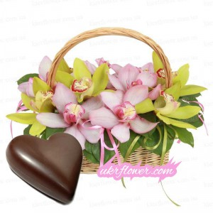 Basket with orchids + a gift! ― Ukrflower - flower delivery