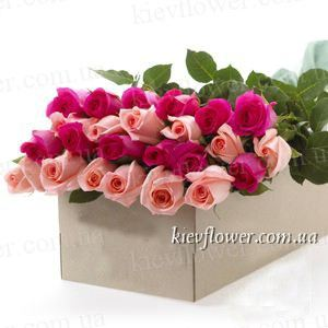 25 roses in a gift box (Rosa Ecuador) ― Ukrflower - flower delivery