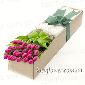 25 tulips in a gift box ― Ukrflower - flower delivery