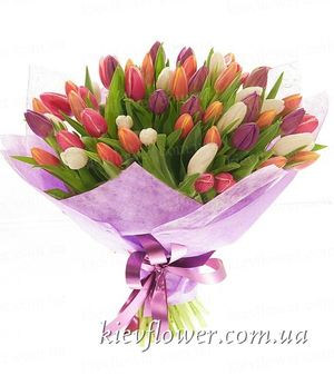 Mixed color 75 tulips  ― Ukrflower - flower delivery