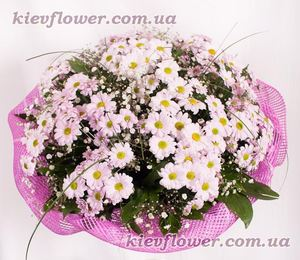 Bouquet of Chrysanthemums ― Ukrflower - flower delivery