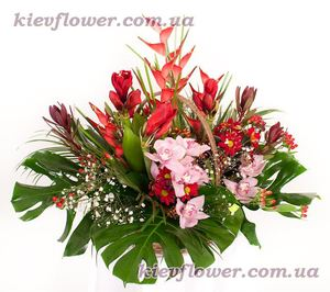 "Exotic Basket ""Red Luxury "" ― Ukrflower - flower delivery"