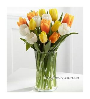 19 mixed-coloured tulips ― Ukrflower - flower delivery