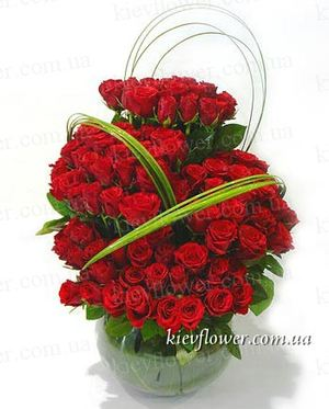 "Composition of 75 roses ""Carmen "" ― Ukrflower - flower delivery"