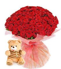 101 roses + Teddy Bear