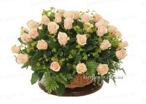 Basket of 51 cream roses