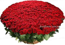 "Basket of 501 Roses ""LUX """