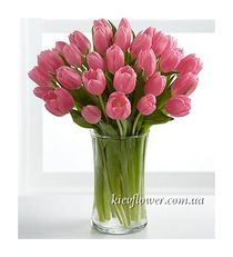 Bouquet of 35 pink tulips