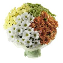 "Buket of chrysanthemums ""Hormony """